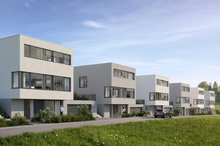 Neubau 8 EFH Sonnmatt, Berg